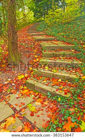 Stairs in autumn - stock photo
