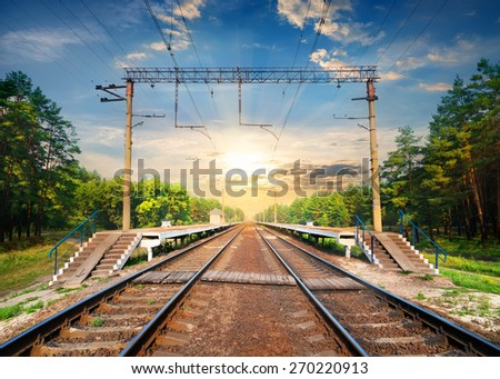 Stairs on a railway station in the forest - stock photo