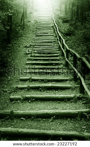 Stairway to heaven in mystic forest - stock photo