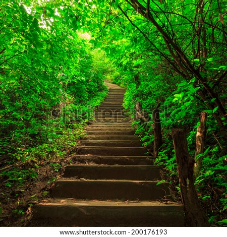 Stairway to jungle, Erawan national park, Kanchanaburi,Thailand - stock photo