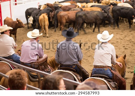 Stampede Stock Photos Images Amp Pictures Shutterstock