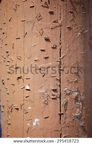 Staples in the wall - stock photo