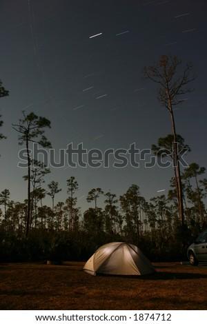 Star movements across night sky with tent and slash pine tree (Pinus elliottii densa) silhouettes, Everglades National Park Pinelands, Florida - stock photo