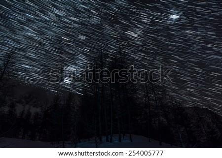 Star trails above alpine forest. Zelenica, Slovenia. - stock photo