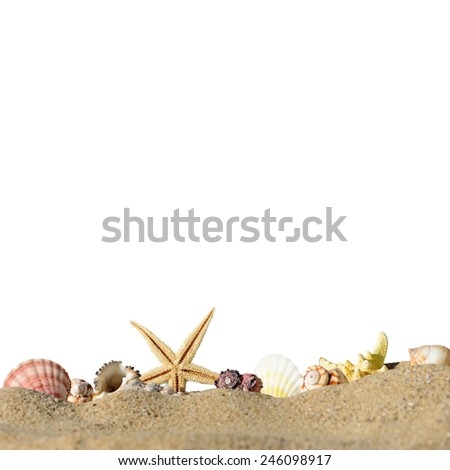 Starfish and sea shells isolated on a white background - stock photo