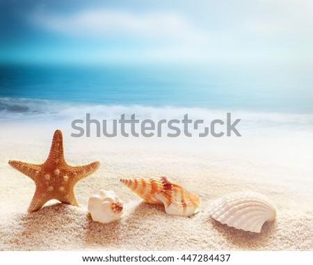 Starfish and sea shells on the beach and ocean as  background. Summer beach. Seashells. - stock photo