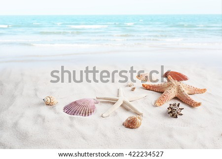 Starfish and seashell on the beach. Summer holiday relaxing seaside top view. - stock photo
