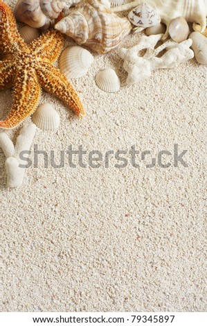 starfish and seashell on tropical beach - stock photo