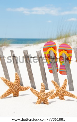 starfish collection by beach fence - stock photo
