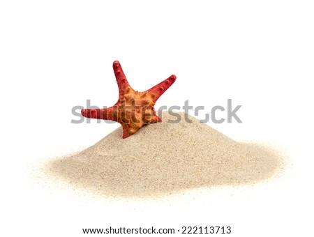 starfish on sand isolated on white - stock photo