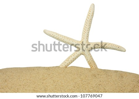 Starfish on the Sand - stock photo