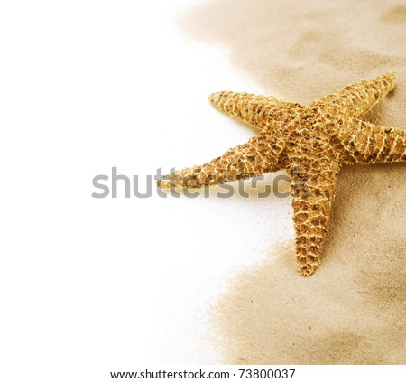 Starfish on the Sand border design.Isolated on white.Vacation concept - stock photo