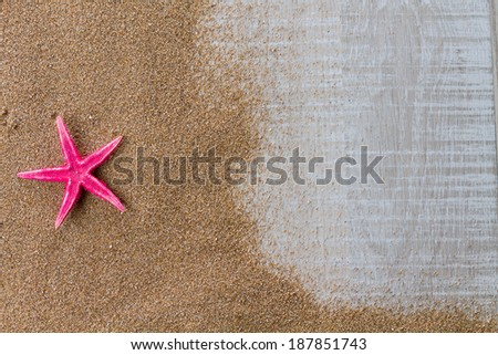 Starfish on the swimming pool deck - stock photo