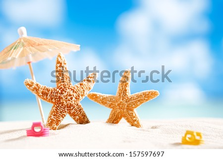 starfish  with ocean , beach and seascape, shallow dof - stock photo