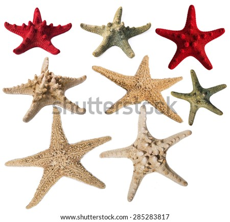 Starfishes collection isolated on white background. Original size - stock photo
