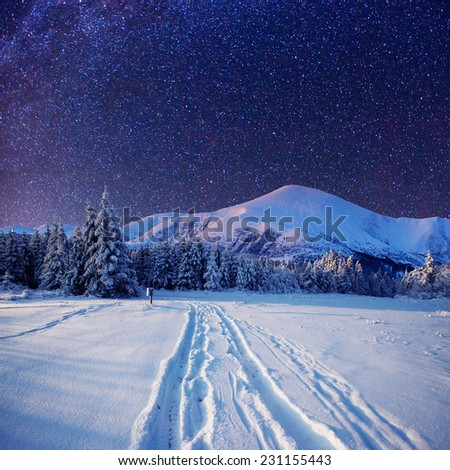 starry sky in winter snowy night - stock photo