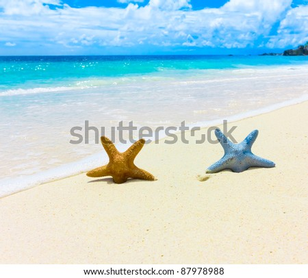 Stars Idea Vacations - stock photo