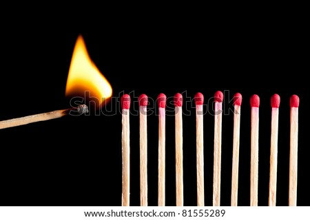starting the fire - wooden matches in a row ready to burn, isolated on black background - stock photo