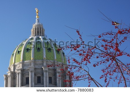 State Capitol in Harrisburg, PA.  Red berries with bird perched. - stock photo