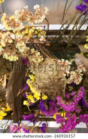 Static flower, Limonium. Static symbolizes remembrance.  - stock photo
