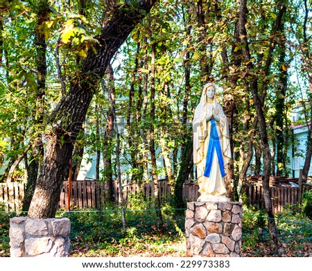 Statue of the Blessed Virgin Mary among ivy covered trees. Green weeds and grey rocks in a garden of Medjugorje - stock photo
