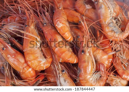 Steam prawns in seafood market.  - stock photo