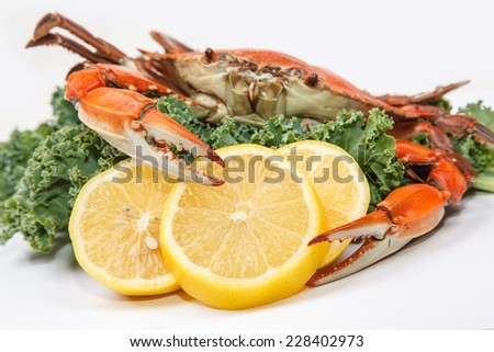 Steamed Blue Crab garnished with kale and lemon slices on white background - stock photo