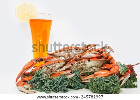 Steamed Blue Crabs garnished with kale and a glass of beer on white background - stock photo