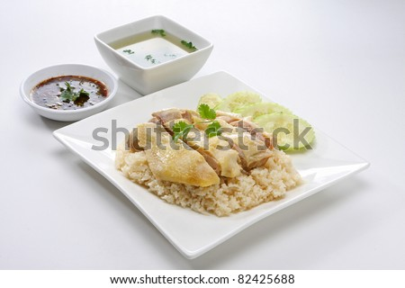 Steamed Chicken over Rice - stock photo