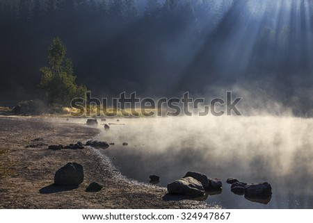 Steamy lake in the forest - stock photo