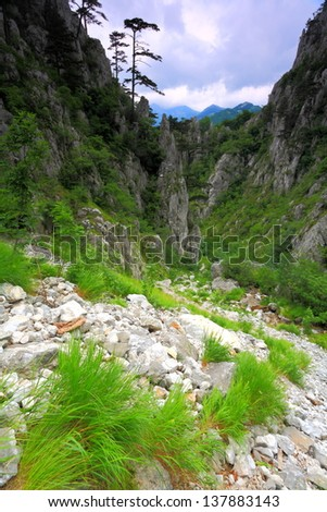 Steep valley surrounded by rich vegetation - stock photo