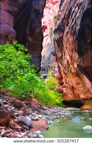 Steep vertical cliffs rise from the Virgin River in The Narrows of Zion National Park - stock photo