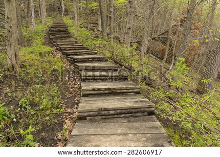 Step Trail In Woods During Spring - stock photo