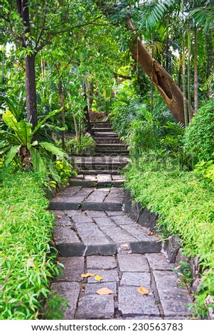 Stepped into the garden path - stock photo