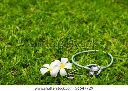 stethoscope and flower on grass - stock photo