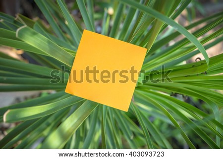 Sticky Note on leaves - stock photo