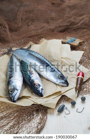 Still life about sportive fishing for mackerel and some related items - stock photo
