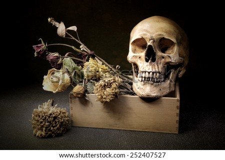 Still life art on skull and bouquet in box - stock photo