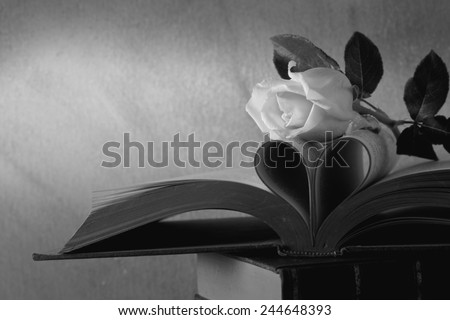 Still life art photography love concept with pink rose vintage book pages love heart sign on grunge black and white version - stock photo