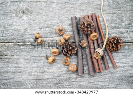 Still life composition with pine cones, wooden sticks and small acorns. Vintage composition with Christmas theme - stock photo