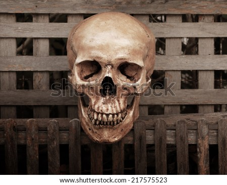 Still life fine art photography on human skeleton criminal concept at wood door - stock photo