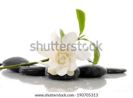 Still life Gardenia with leaf and zen stones - stock photo