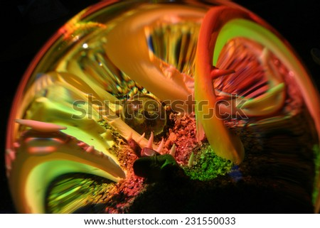still life illuminated spectral colors of the ball through the - stock photo