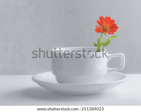 still life of flower in a coffee cup - stock photo