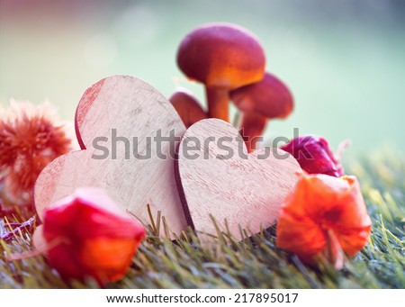 Still Life of Wooden Hearts with Mushrooms and Chinese Lanterns in Grass - stock photo