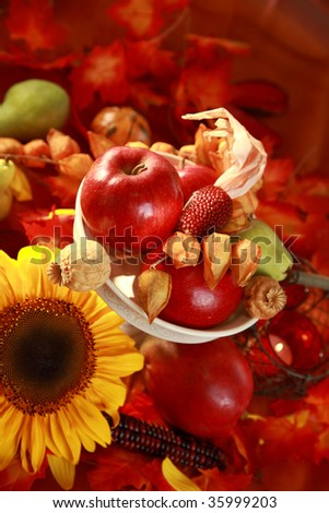 Still life or table decoration for Thanksgiving - stock photo