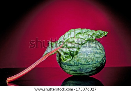 still life Photography  with  Watermelon - stock photo