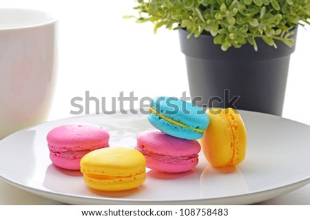 Still life picture of assorted macron on the table - stock photo