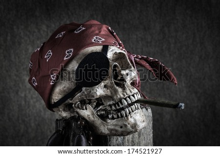 Still life, pirate skull with cigar in the mouth on the log - stock photo