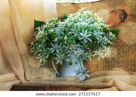Still life with a bunch of small white florets on a window - stock photo